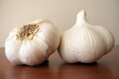 garlic-new-645x429
